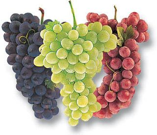 Three-grapes