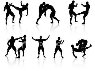 Mixed_martial_arts