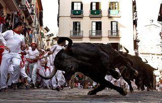 Running Bulls